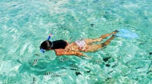 Puerto-Morelos-Snorkeling