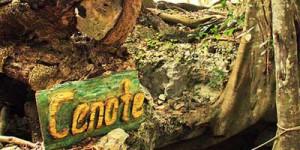 entrada-del-cenote-boca-de-puma