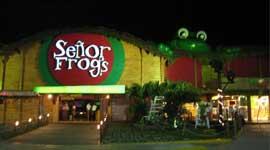 foto-Sr.-Frogs-cancun